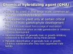 chemical hybridizing agent cha