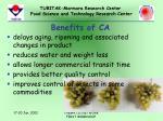 benefits of ca
