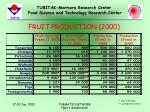 fruit production 20005