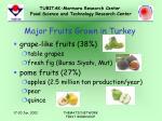 major fruits grown in turkey