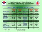 vegetable production 20007