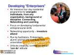 developing enterprisers