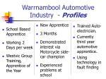 warrnambool automotive industry profiles