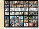 storyboard examples17