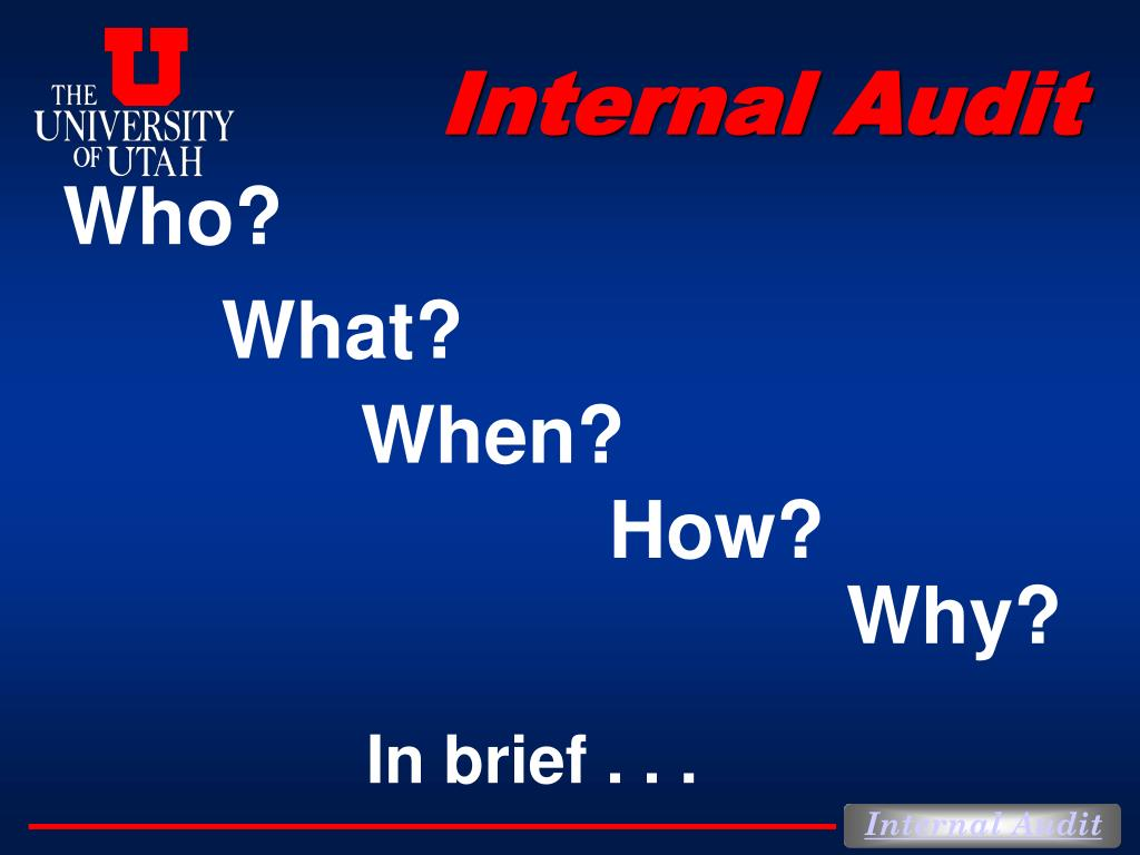 internal audit l.