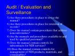 audit evaluation and surveillance21