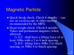 magnetic particle45