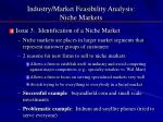 industry market feasibility analysis niche markets