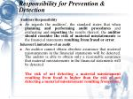 responsibility for prevention detection9