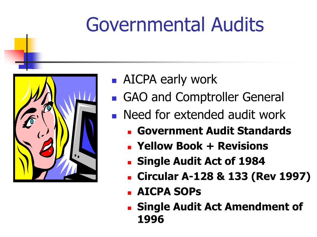 governmental audits l.