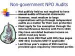 non government npo audits
