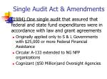 single audit act amendments