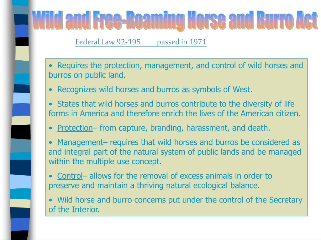 Wild and Free-Roaming Horse and Burro Act