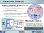 evc service attributes