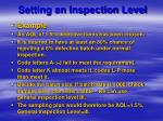 setting an inspection level41