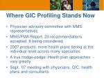 where gic profiling stands now