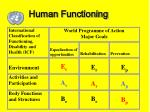 human functioning14