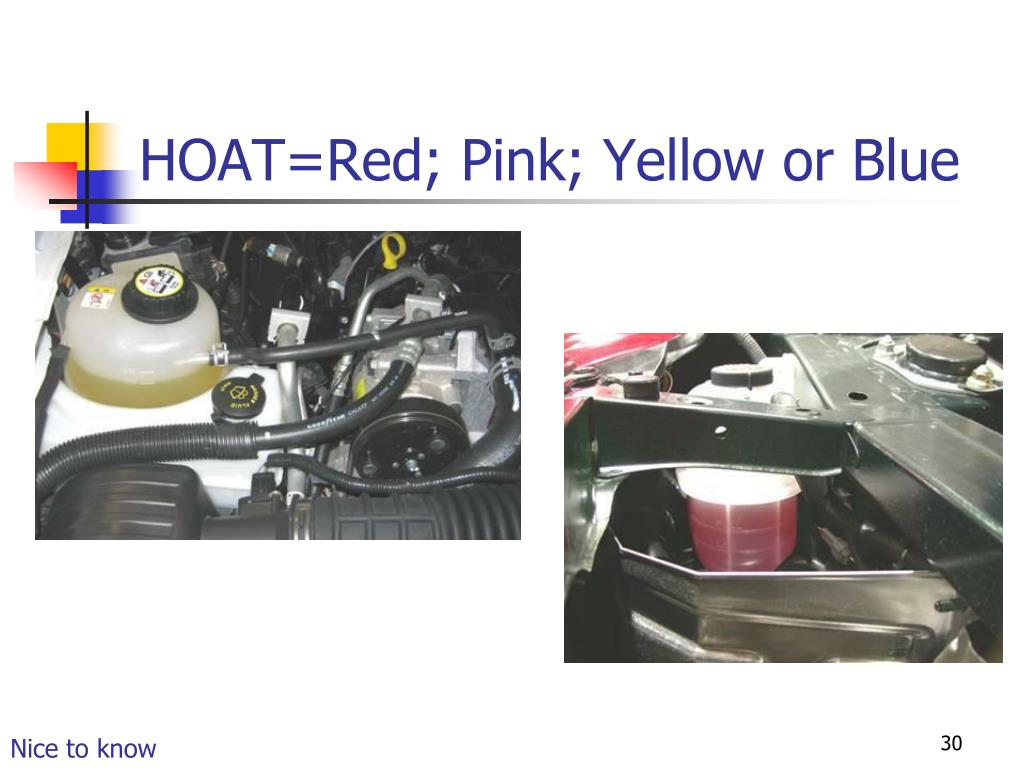 HOAT=Red; Pink; Yellow or Blue