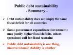 public debt sustainability summary