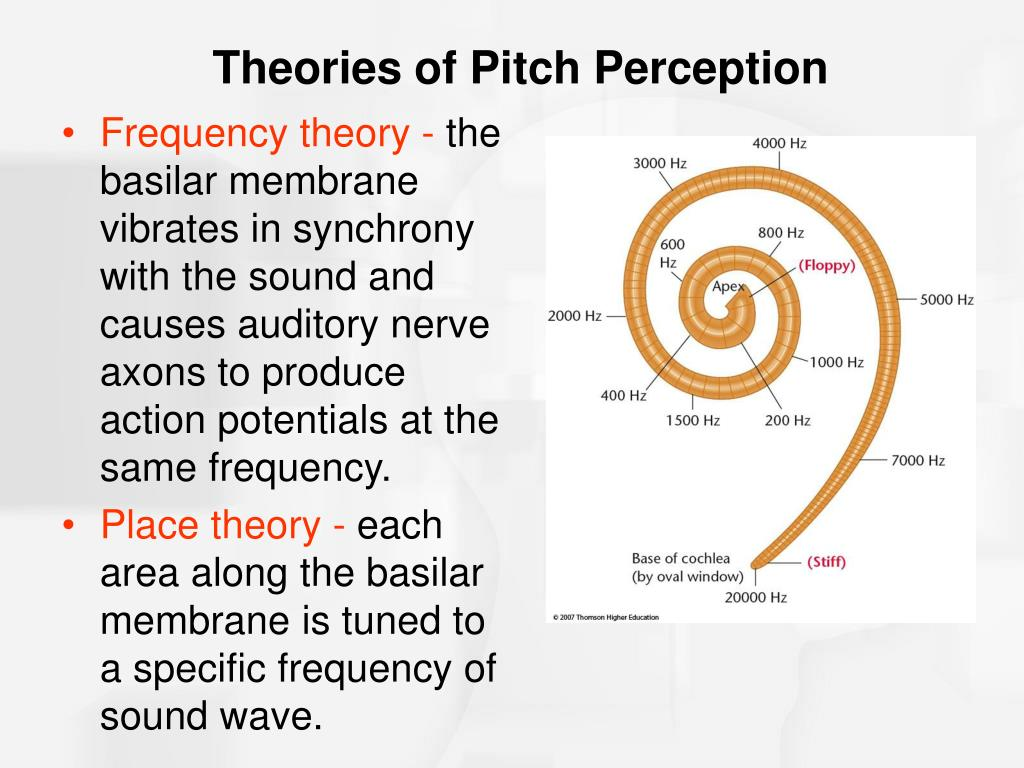 Frequency theory -
