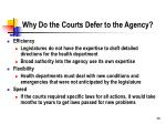 why do the courts defer to the agency