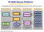 ip ngn secure platform what is ip ngn security