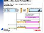 sum architecture protocol flow message flow for triple encapsulation tunnel establishment