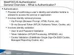 webfocus authentication general overview what is authentication