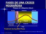 fases de una crisis migra osa