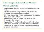 minor league ballpark case studies proven catalysts28