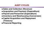 audit cycles