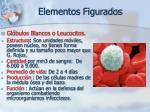 elementos figurados27