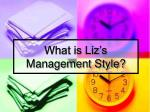 what is liz s management style