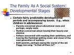 the family as a social system developmental stages