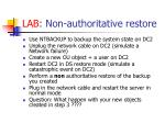 lab non authoritative restore