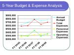 5 year budget expense analysis