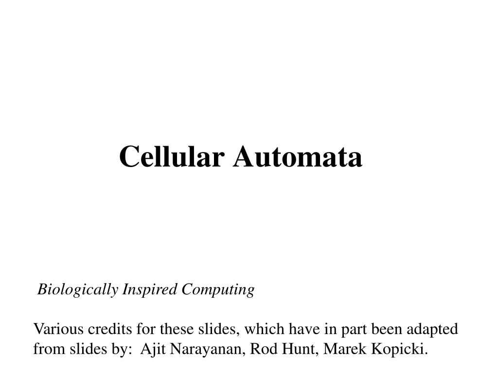 cellular automata l.