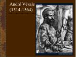 andr v sale 1514 1564