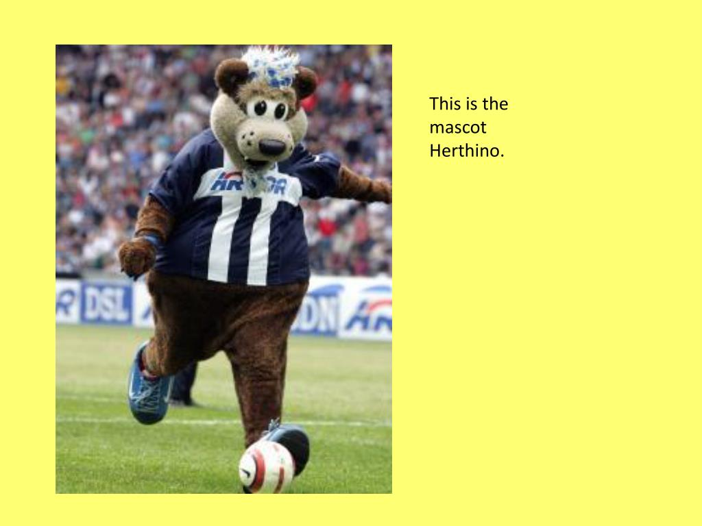 This is the mascot Herthino.