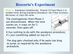 rescorla s experiment12