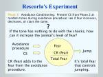 rescorla s experiment15