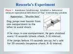 rescorla s experiment3