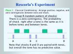 rescorla s experiment7