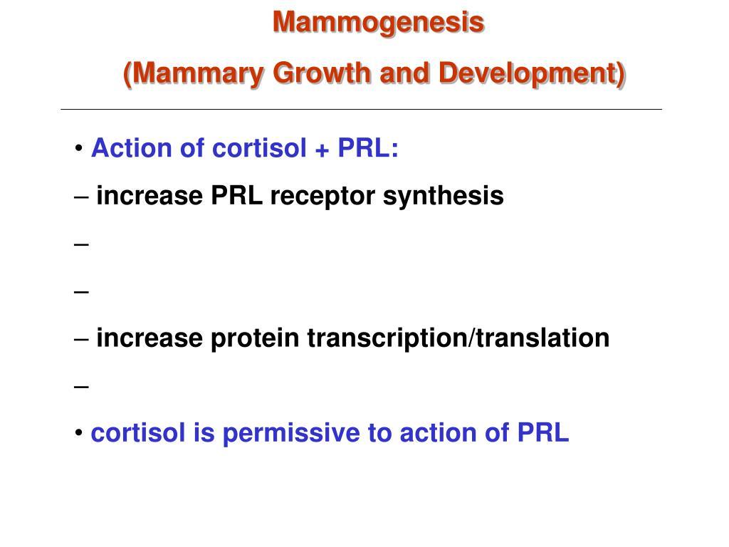 Mammogenesis