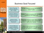 business goal focused