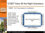cobit asks all the right questions