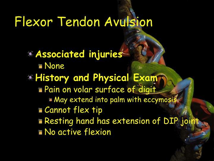 Flexor Tendon Avulsion