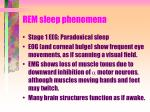 rem sleep phenomena