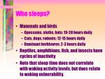 who sleeps