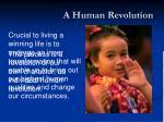 a human revolution